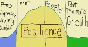 Resiliency Revisted